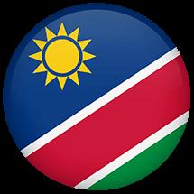NAM Flag